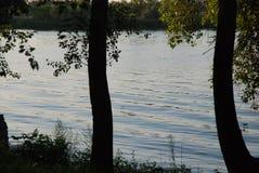 Solnedgång på Donet River Fred och tystnad Stor flod Träd över vattnet arkivbilder