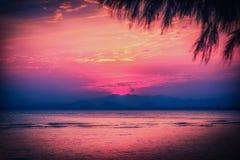 Solnedgång på dramatisk himmel över berget och havet med bladträdet vin Royaltyfri Fotografi