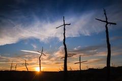 Solnedgång på El Bosc de les Creus & x28; Skogen av Crosses&en x29; Arkivfoton
