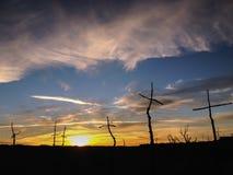 Solnedgång på El Bosc de les Creus & x28; Skogen av Crosses&en x29; Arkivbilder