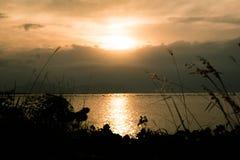 Solnedgång på en flod med gräsförgrund arkivfoton