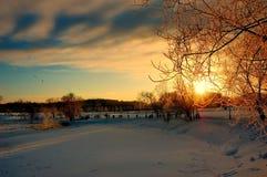Solnedgång på en frostig dag Arkivfoton