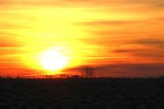 Solnedgång på en kall Februari morgon Fotografering för Bildbyråer