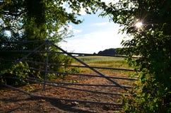 Solnedgång på en lantgård royaltyfria bilder