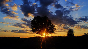 Solnedgång på en sommarafton Royaltyfria Foton
