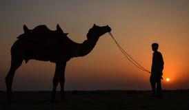 Solnedgång på en sommardag arkivfoto