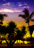 Solnedgång på en strand, Royaltyfria Foton