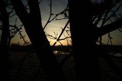Solnedgång på ett hav i Tyskland fotografering för bildbyråer
