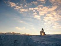 Solnedgång på ett snöig berg Solstrålar till och med granen på horisontlinjen arkivbild