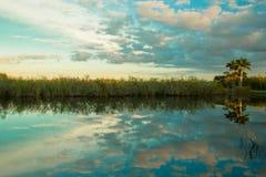 Solnedgång på Evergladesnationalparken Royaltyfria Bilder