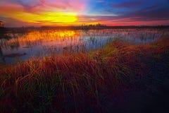Solnedgång på fält Fotografering för Bildbyråer
