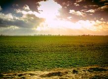 Solnedgång på fältet Royaltyfria Foton