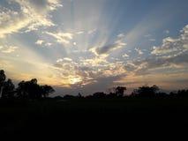 Solnedgång på fältet Royaltyfri Fotografi
