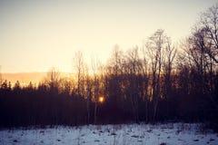 Solnedgång på Februari 14, 2017 Fotografering för Bildbyråer