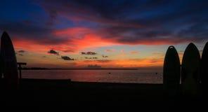 Solnedgång på fjärden med kanoter och kajaker som konturer i sommar royaltyfri fotografi