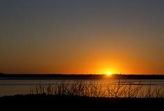 Solnedgång på fjärden med konturstrandfilialer royaltyfri foto