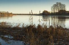 Solnedgång på floden med cattails Arkivfoto