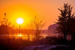 Solnedgång på floden nära skogen, solkatt i th arkivbild
