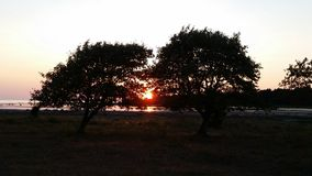 Solnedgång på Gotland Arkivbilder