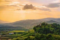Solnedgång på gröna kullar i Maribor Slovenien royaltyfri bild