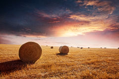 Solnedgång på höfältet Arkivfoton