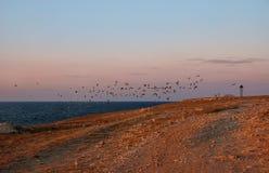 Solnedgång på halvön av Tarhankut fotografering för bildbyråer