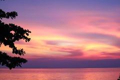solnedgång på havs- och konturträd och färgrik molnaftonhimmel royaltyfri bild