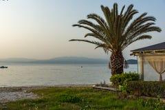 Solnedgång på invallning och palmträdet i den Thassos staden, Grekland Royaltyfri Fotografi