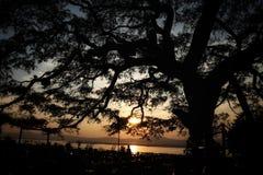 Solnedgång på Irrawaddy arkivbilder