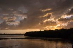 Solnedgång på J n Ding Darling National Wildlife Refuge Sanibe Royaltyfri Bild