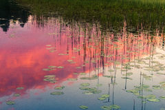 Solnedgång på Kenozero sjön Arkivbild