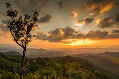Solnedgång på klippan royaltyfria bilder