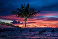 Solnedgång på Ko Tao Royaltyfri Fotografi