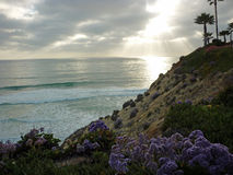 Solnedgång på kust royaltyfri bild