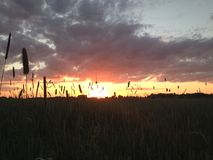 Solnedgång på landssidan Royaltyfria Bilder