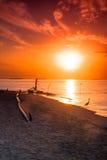 Solnedgång på Maldiverna Royaltyfria Foton