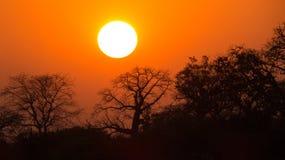 Solnedgång på Mandu/Mandav-India Royaltyfri Fotografi