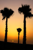 Solnedgång på Marocko Royaltyfria Foton