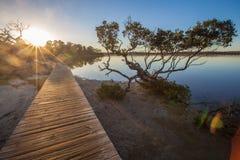Solnedgång på Merimbula sjön, Victoria, Australien Arkivbilder