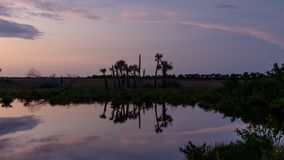 Solnedgång på Merritt Island National Wildlife Refuge, Florida Arkivfoton