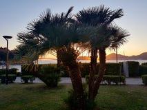 Solnedgång på Montenegro Royaltyfria Bilder