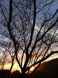 Solnedgång på nätterna fotografering för bildbyråer