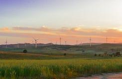 Solnedgång på prärien Arkivbilder