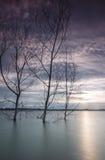 Solnedgång på Puchong sjön royaltyfri foto