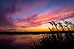 Solnedgång på riber Royaltyfri Foto