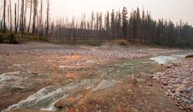 Solnedgång på sammanflöde av South Fork den Flathead floden och borttappade Jack Creek på ängliten vikklyftan i Bob Marshall Wild Fotografering för Bildbyråer