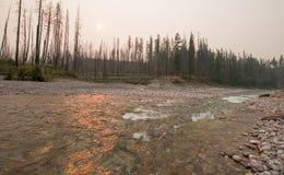 Solnedgång på sammanflöde av South Fork den Flathead floden och borttappade Jack Creek på ängliten vikklyftan i Bob Marshall Wild Arkivfoto