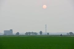 Solnedgång på Sekinchan Arkivbild