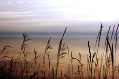 Solnedgång på sjön Royaltyfri Foto