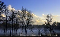 Solnedgång på sjön i Tallahassee, Florida Fotografering för Bildbyråer